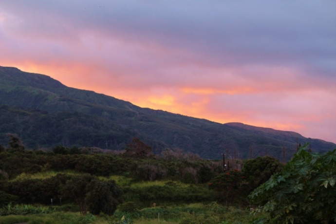 Scenic Maui, photo by Wendy Osher.