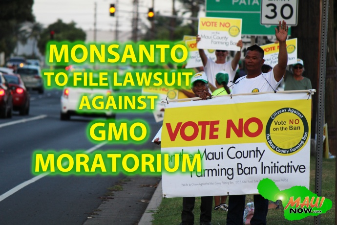 Monsanto to file lawsuit against newly passed Maui GMO moratorium. Graphics by Wendy Osher.