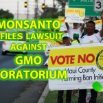 Monsanto Challenges Passage of Maui GMO Initiative