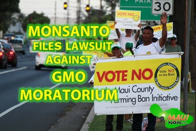 Monsanto files lawsuit against newly passed Maui GMO moratorium. Graphics by Wendy Osher.