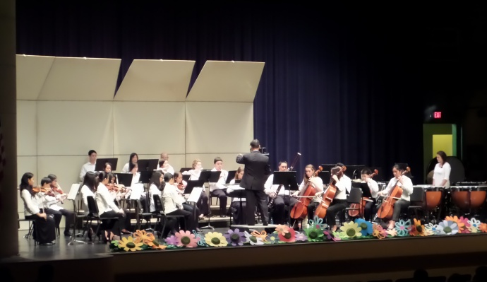 Maui Youth Philharmonic student musicians perform at H.P. Baldwin Auditorium, under the direction of Mr. Lance Jo. Credit: Lois Whitney