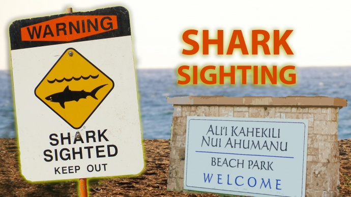 Shark sighting in West Maui. Graphics: Wendy Osher/Maui Now.