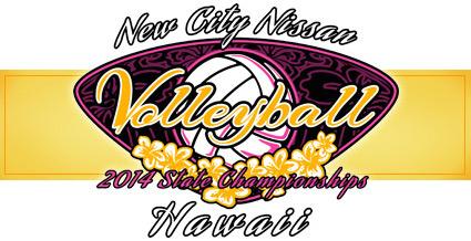 banner_2014_volleyball