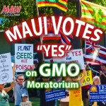 Anti-gmo march and rally in Kahului on Sunday, Oct. 26, 2014. Photo by Rodney S Yap.  Graphics by Wendy Osher.