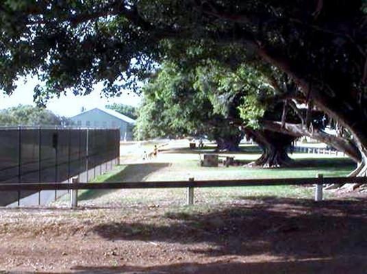 Hāliʻimaile Park and Tennis courts. Photo courtesy County of Maui.