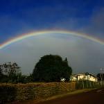 Pukalani Rainbow Yesterday / Image: Asa Ellison