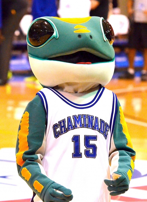The Chaminade University mascot will be leading the cheers for the Silverswords when the 2014 Maui Invitational Tournament tips off Monday at Lahaina Civic Center. File photo by Rodney S. Yap.