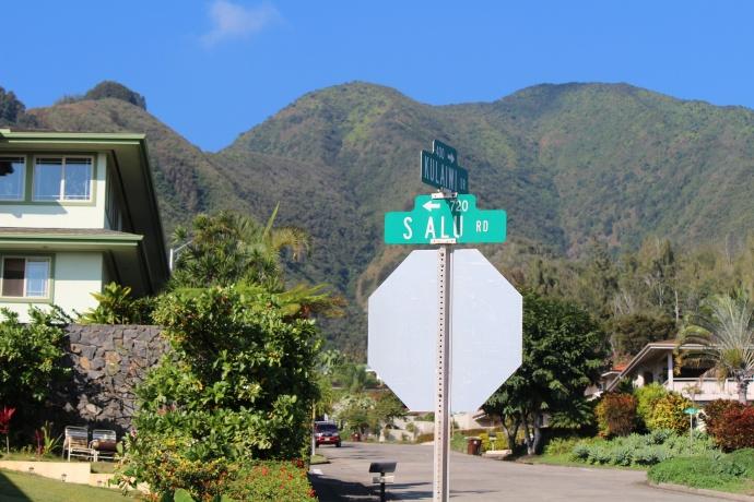 South Alu Road, Wailuku Heights. Photo by Wendy Osher.