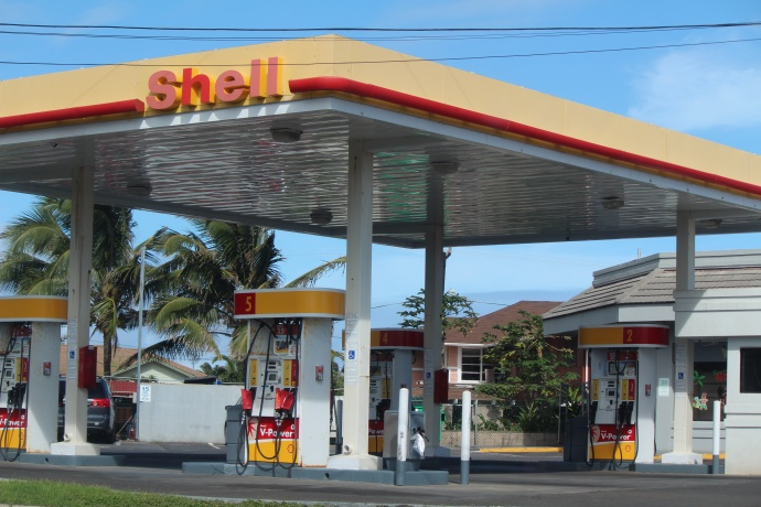Shell, Waiehu Beach Center.  Dec. 18, 2014. Photo by Wendy Osher.