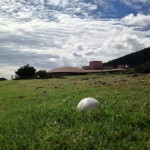 Nēnē goose egg at The King Kamehameha Golf Club.  Photo by: Rick Castillo.