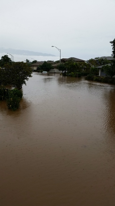 Kuukama Street Flooding. Photo courtesy Tara Tran.