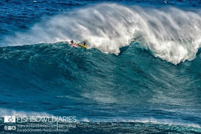 Maui now photos pe ahi jaws swell week of dec 7 for Fish bowl maui