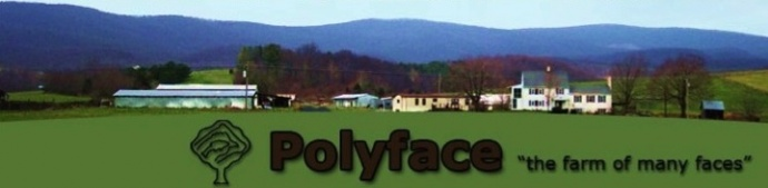 Polyface Farm is a thriving, multi-species farm in Virginia.