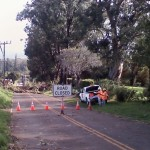 Olinda Road