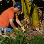 Kaiser Permanente Employees Honor Holiday with Service Day at Maui Farm