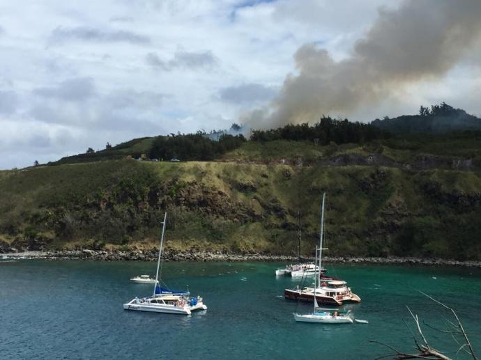 Honolua Bay brush fire, 2/20/15. Photo credit: Dino Tassara.