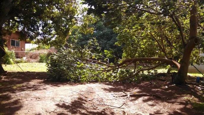 Storm related damage Maui 2/14/15.