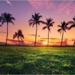 Maui / Image: Mike Neubauer