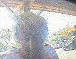 Maui Police Release Surveillance Photo in Theft Investigation