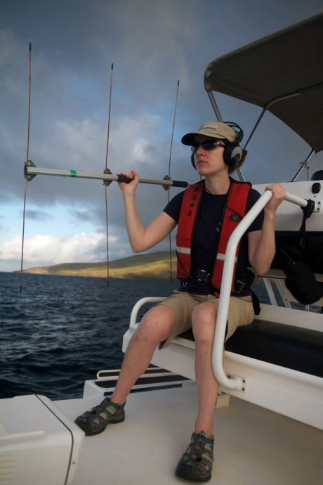 Rachel Finn uses telemetry to attempt to locate the entangled whale that had a telemetry package attached to it on 2/15/15 off the Big Island. (Courtesy of G. Thompson)