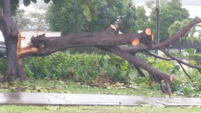Valentine's Day storm damage Maui, 2/14/15. Wailuku.  Photo credit: Roberta Simko.