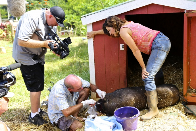 National Geographic's new reality show to feature Leilani Farm Sanctuary.  Photo courtesy: Laurelee Blanchard.