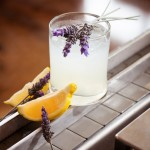 Last Call for Ocean Vodka Cocktail Contest Entries