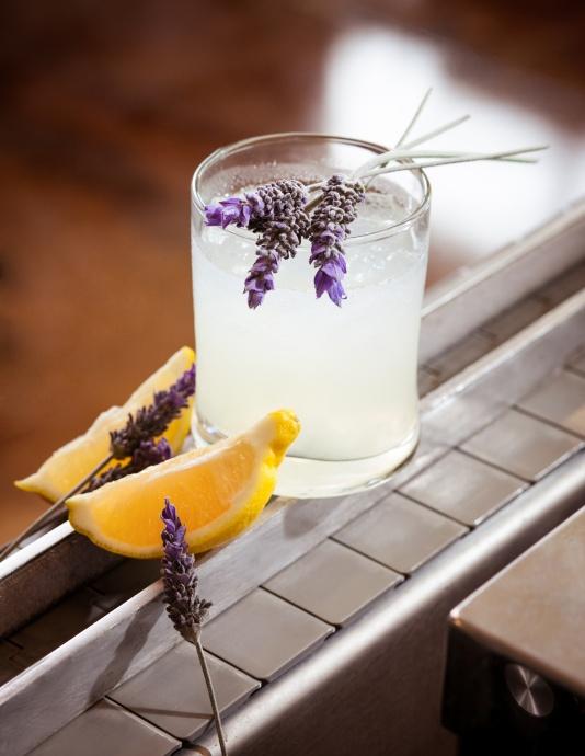 Ocean's Lemon Blossom Martini. Image courtesy Jessica Pearl