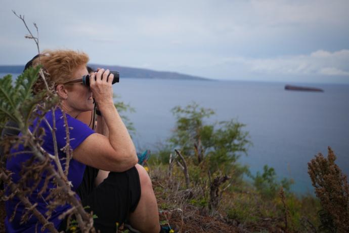 Great Whale Count Maui. Photo credit: Selket Guzman.