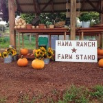 Hāna Ranch Takes Sustainable Produce to Roadside Stand