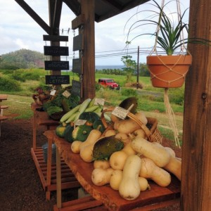 Hāna Ranch Farm Stand. Courtesy photo.