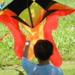 Chinese Kite Flying Festival at Wo Hing Museum, Kāʻanapali Beach