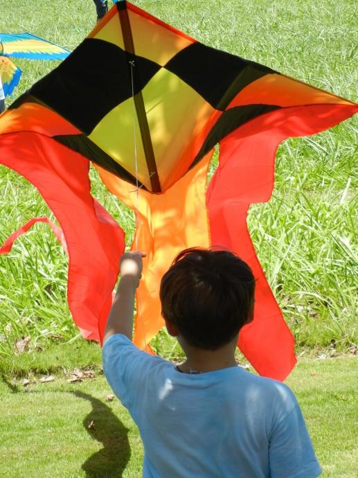 KiteFest boy with kite at beach