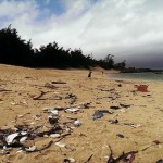Baldwin Beach Littered with Mysterious Debris