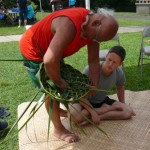 Practitioners Wanted for Cultural Demonstrations at Haleakalā, Kīpahulu