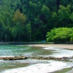 Hāna Bay Septic System Surfaces for Discussion in Council Committee