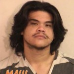 Maui Man Arrested and Charged in Death of Aunt