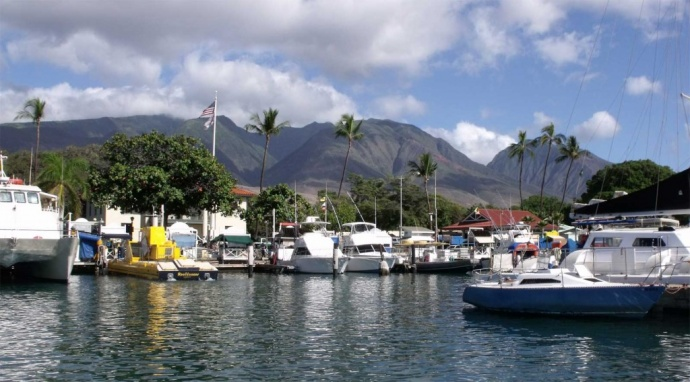 Lahaina Harbor. Photo courtesy Rep. Angus McKelvey.