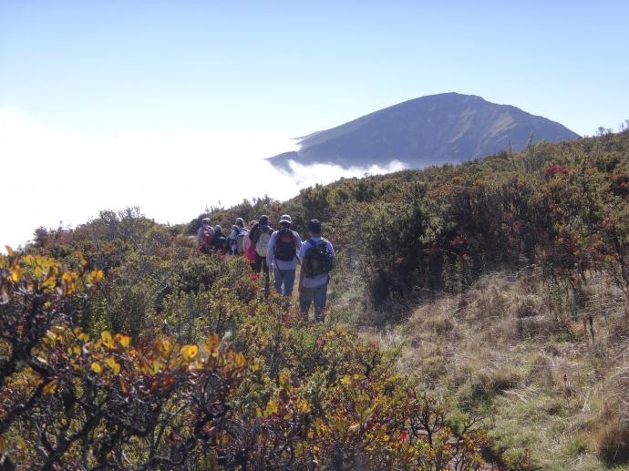 Scenic view from wilderness hike. Photo courtesy Haleakalā  National Park.