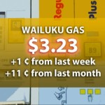 Hawaiʻi's Average Gas Prices Remain Steady