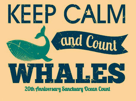 Keep Calm and Count Whales, event flyer.
