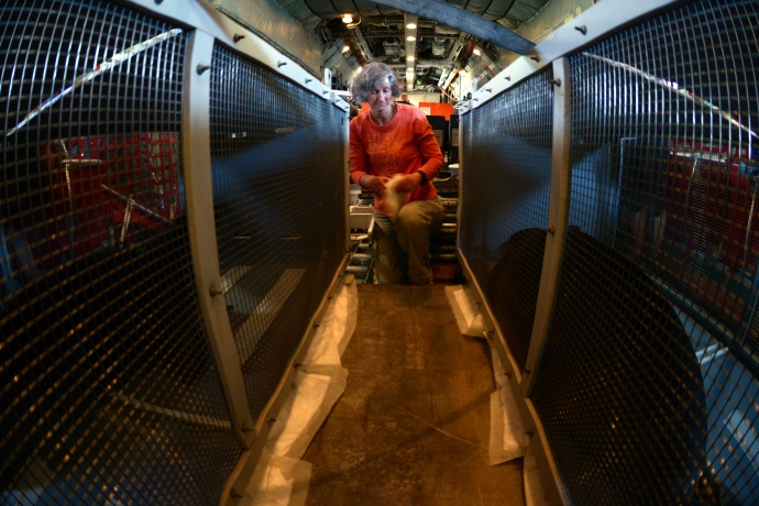 Brenda Becker, a Hawaiian Monk Seal research program scientist for the National Oceanic and Atmospheric Administration, lays down absorbent pads for two female Hawaiian Monk Seals on an HC-130 Hercules airplane, March 18, 2015. Coast Guard crew members, NOAA, U.S. Fish and Wildlife Service and the Department of Land and Natural Resources partnered together to transport two rehabilitated Hawaiian Monk Seals to Midway Atoll where they would be transferred via ship Kure Atoll State Wildlife Sanctuary. (U.S. Coast Guard photo by Petty Officer 2nd Class Tara Molle) NMFS permit #932-1905-01/ma-009526-1
