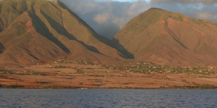 Ag Fields Maui agriculture