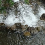 ʻĪao Valley State Park Closed Due to High Stream Flow
