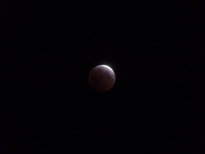 April 4, 2015 total lunar eclipse / Image: Helena Ross Brown