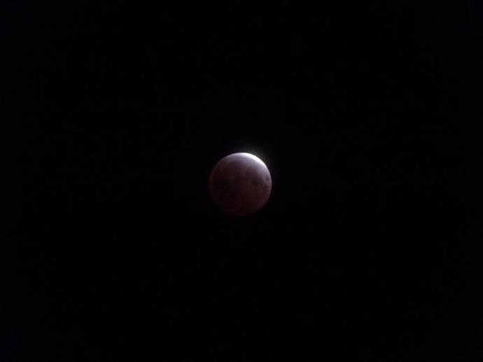 April 4, 2015 total lunar eclipse / Image: Helena Ross Brown
