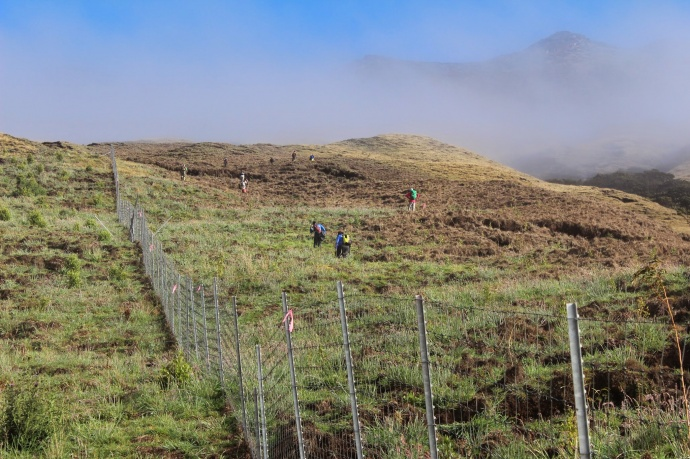 Kupu Hawai'i Youth Conservation Corps volunteers hiking up to the outplanting site at Nakula Natural Area Reserve, Maui. Photo by Kirsten Gallaher