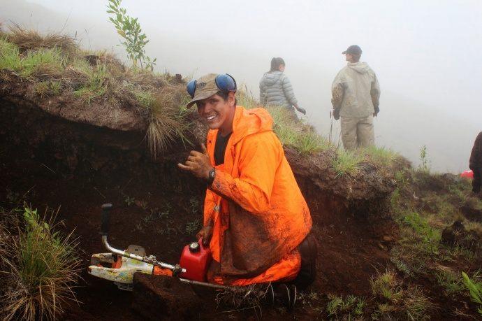 Division of Forestry and Wildlife staff outplanting trees at Nakula Natural Area Reserve, Maui. Photo by Kirsten Gallaher.