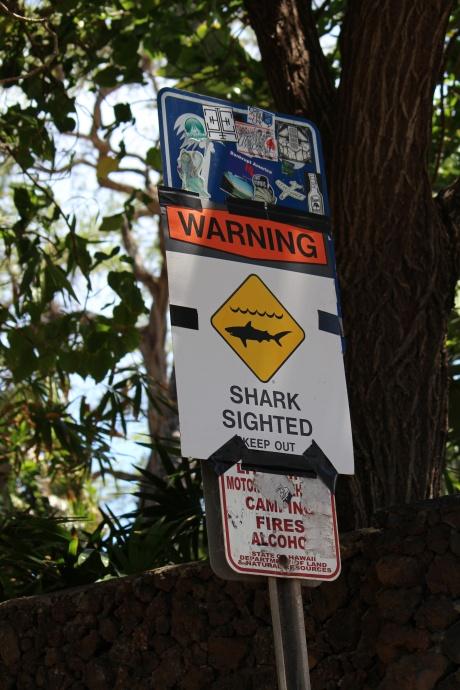 """Dumps"" surf spot in Mākena at ʻĀhihi Kīnaʻu. Photo 4/29/15 by Wendy Osher."