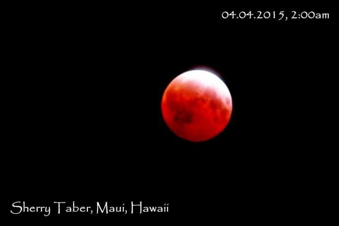 April 4, 2015 total lunar eclipse / Image: Sherry Taber
